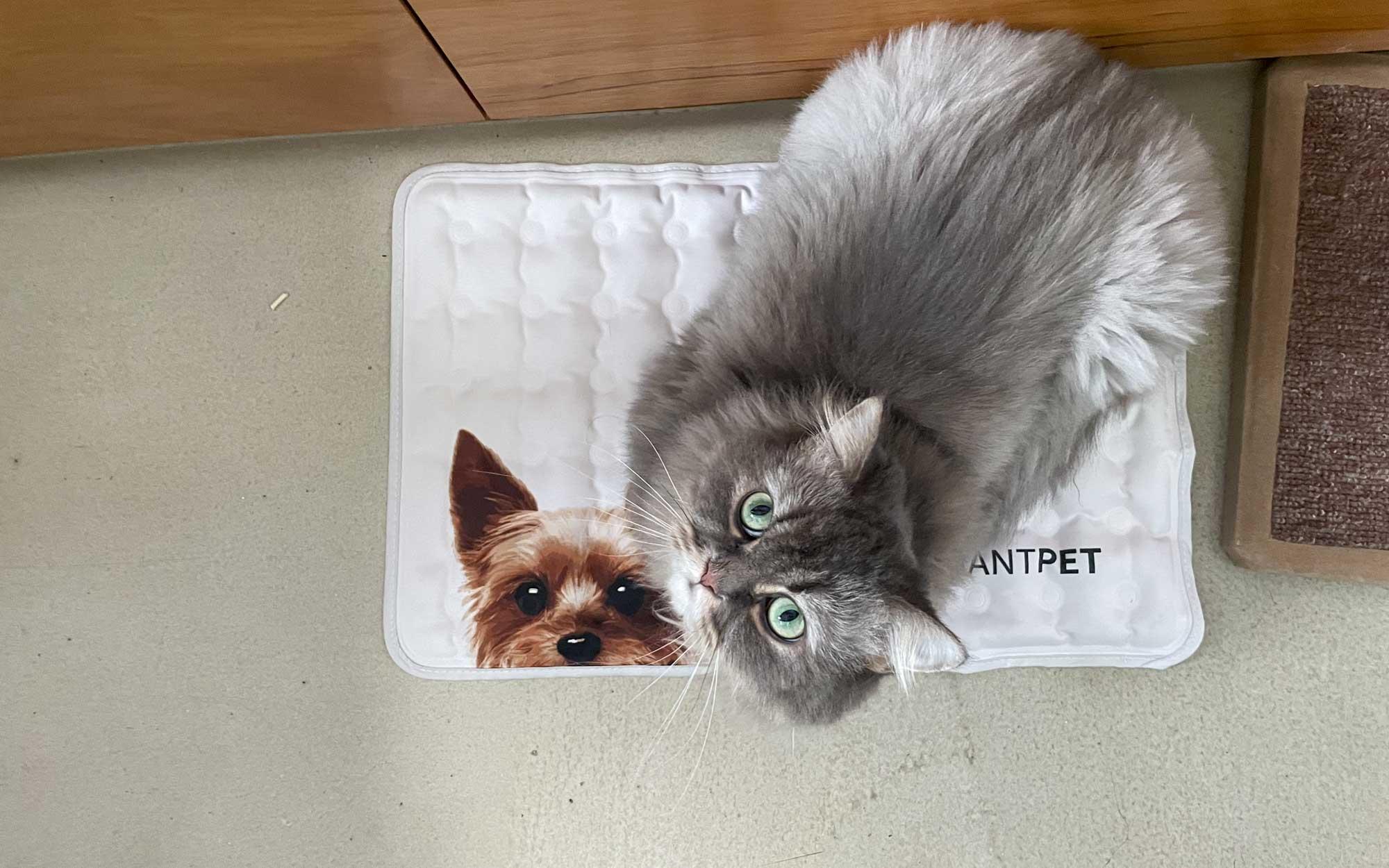 Avantpet Korean Premium Cooling Mat